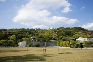 新緑の松山城