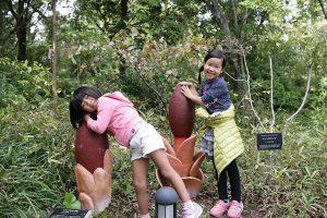 自然の中で遊ぶ子供たち、自然と親しみ心が豊かになりそう!