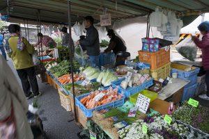 季節の野菜がいっぱい。