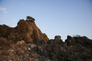 中岡慎太郎像の前には乱礁遊歩道があり、ゴツゴツとした岩群が広がる。夕日に照らされてきれい。