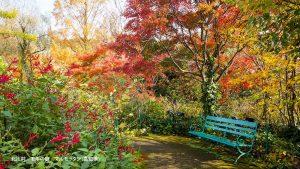 北川村 モネの庭 マルモッタン(高知県)