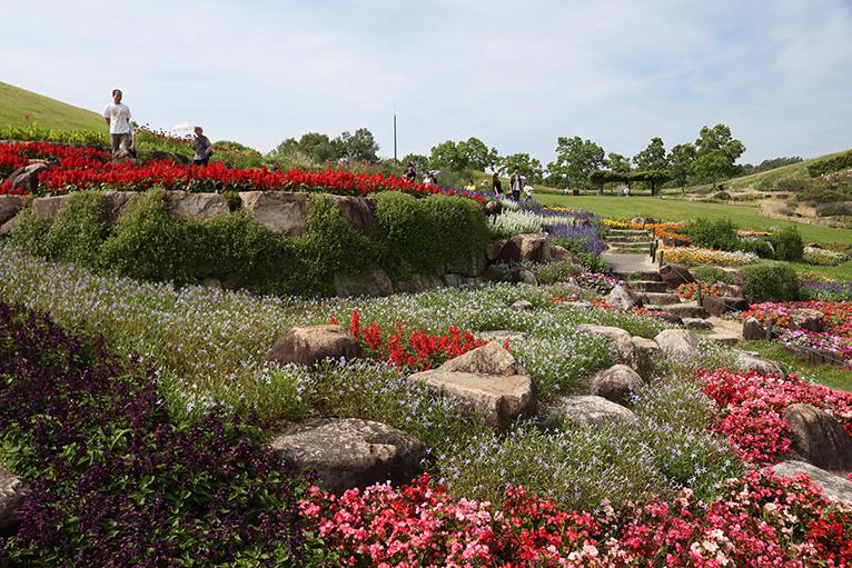 園内には四季折々の美しい花が咲き誇る