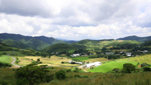 大野ケ原に広がる酪農地帯