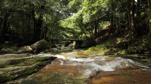 新緑や紅葉が美しい成川渓谷